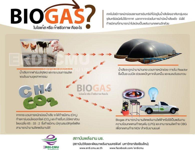 เปลี่ยนน้ำเสีย เป็นพลังงาน ลดค่าไฟ ไร้ปัญหากลิ่นเหม็นด้วย ด้วยระบบ Biogas