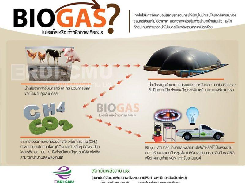 เปลี่ยนน้ำเสีย เป็นพลังงาน        ลดค่าไฟ ไร้ปัญหากลิ่นเหม็น  ด้วย Biogas