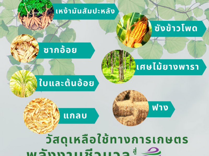 วัสดุเหลือใช้ทางการเกษตรสู่พลังงานชีวมวล