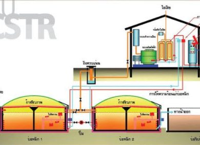 CMU-CSTR เทคโนโลยีที่สามารถเปลี่ยนพืชพลังงานให้กลายเป็นพลังงานทดแทน
